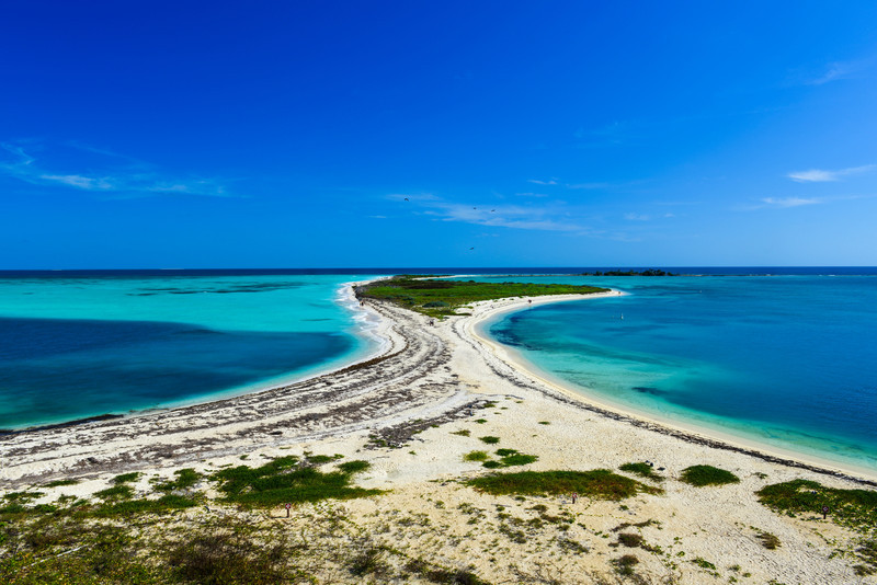 Bush Key in the Dry Tortugas National Park