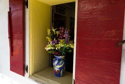 Flowers in the window.