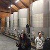 Stainless steel fermentation tanks for the wine.