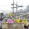 Haebangchon, Seoul