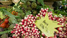 Fresh radishes and produce, Provence, France, Europe