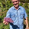 Winemaker Pavle Jablan family farm, Honey Tales & Trails,Rvaši, Rijeka Crnojevića, Montenegro