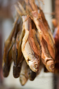 Dried fish. Kowloon city street market. Hong Kong.