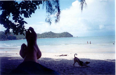 Ao Thong Nai Pan, Koh Pha-ngan, Thailand: April 2002