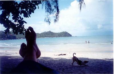 Ao Thong Nai Pan, Koh Pha-ngan, Thailand: April 2002