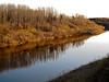 Shoreline of Yelow Creek