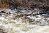 Ice and water in small creek near Fort Albany water plant.