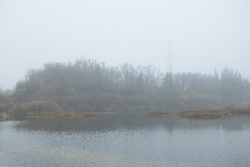 Foggy morning, microwave tower from causeway.