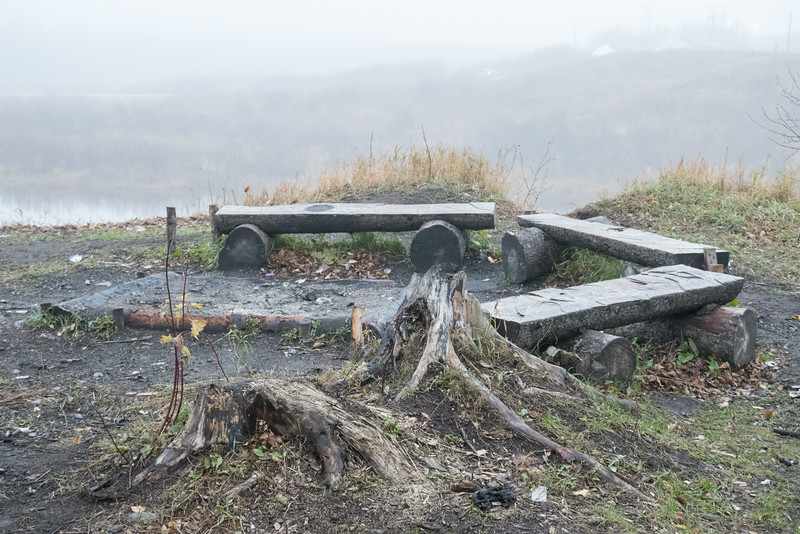 Benches made from split lots around a firepit on Anderson Island. Fog.