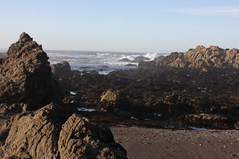 Surf by tide pools