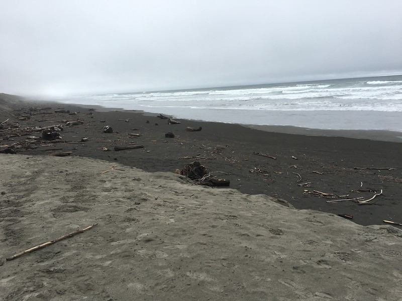 Visiting the beach at Fort Stevens