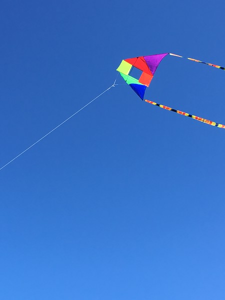 One of our kites at Fort Stevens SP