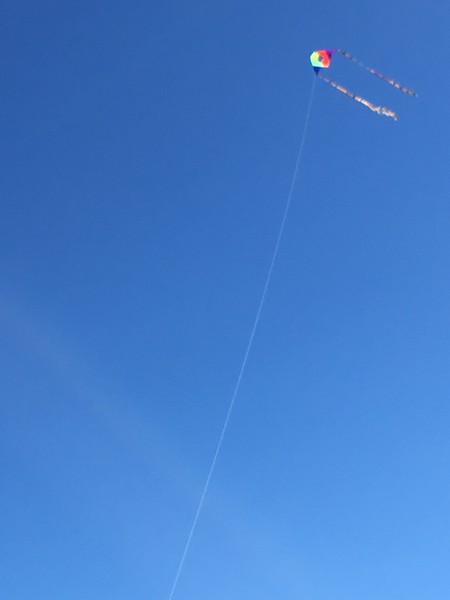 Teeny kite, so high