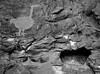 Chaco turkey and a heart shaped cavity in the canyon wall - Una Vida