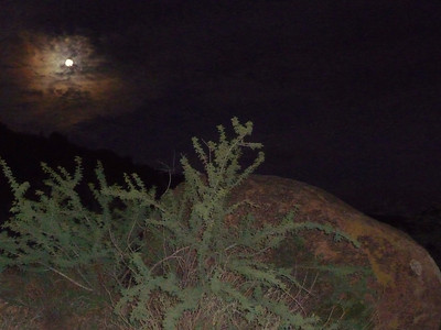 Awesome full moon with a veil of clouds
