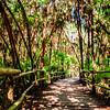 Bocab Eco Park, Belize