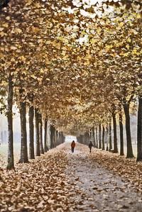 Parc de Sceaux Sceaux France - Oct 1978