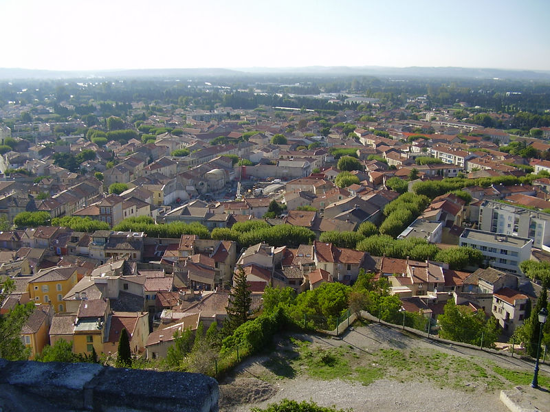 View of Châteaurenard from it's castle. The treeline follows the path of the original castle walls.