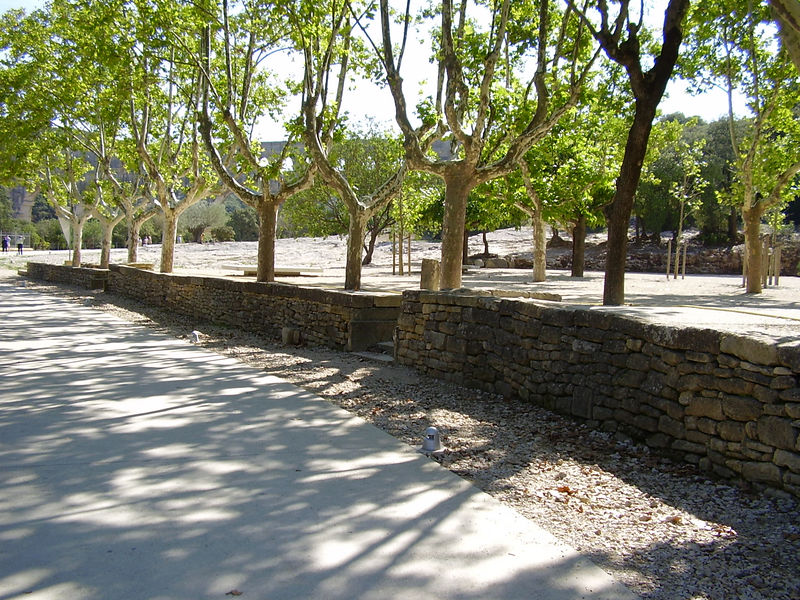 Plane trees in the park at the Pont du Gard (you can just see it through the trees).