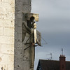 Chartres Cathederal