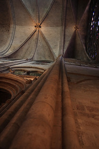 Notre Dame, Interior - Ribbed Vault & Column Detail