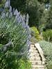 Headed for the gardens at the Villa Ephrussi de Rothschild