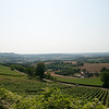 At Vezelay, a larger village (of 300!) near Blannay