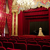 Chateau des Ducs de Brissac. Private theater built in 1890 to allow one of the family members to put on her own concerts. She's the same one who hunted all the deer and mounted their antlers.