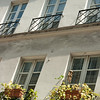 Windowboxes: In the Quartier Latin
