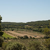 Wine & olive groves from the windmill: On the island of Porquerolles, off Hyères, in southern France