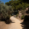 Then we climbed the hill above town... on more hot, dusty roads: On the island of Porquerolles, off Hyères, in southern France