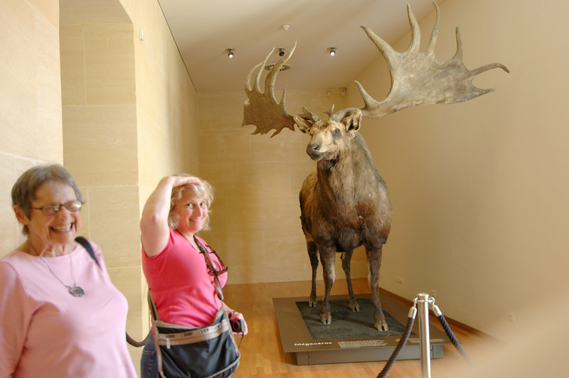 "Jamie (about 5'2"") is trying to give you a sense of scale - the deer/moose thing is huge. Ruth is just laughing."