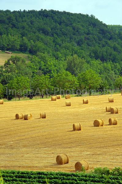Campagnac, Midi-Pyrenees