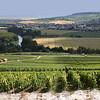 Champagne landscape