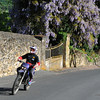 biker passes dense wisteria at Vitrac, a few minutes' walk from our gite.