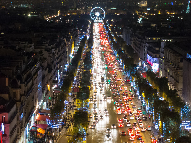 Trees are prettier from atop the Arc de Triomphe when we're not being elbowed for the hour-long walk up the Champs-Elysees.