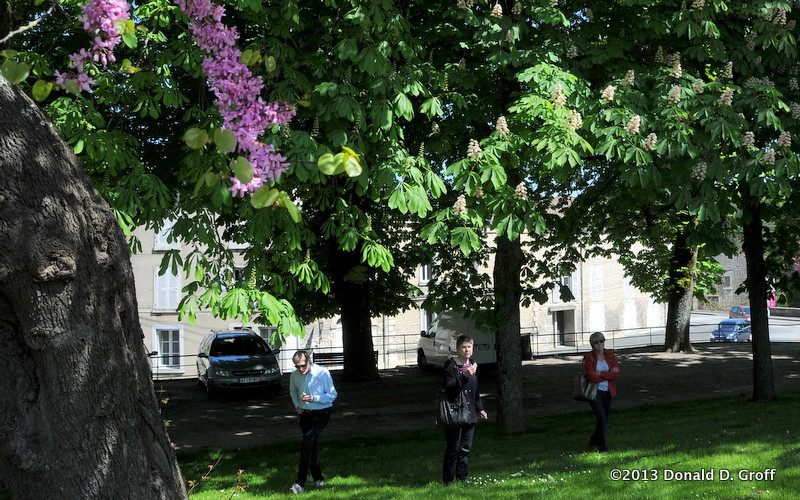 blossoming redbud and (left) and chestnut trees in the town of Fontenay.   our hosts Michael & Mary, with Kris.