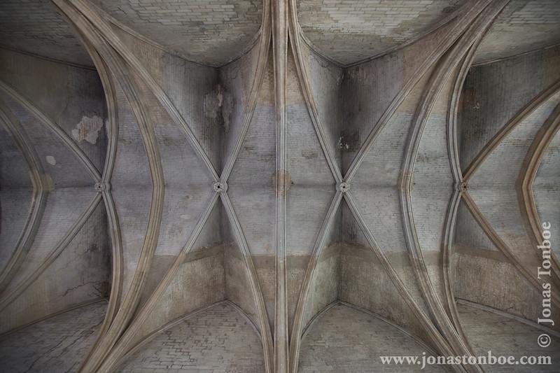 Palais des Papes Ceiling