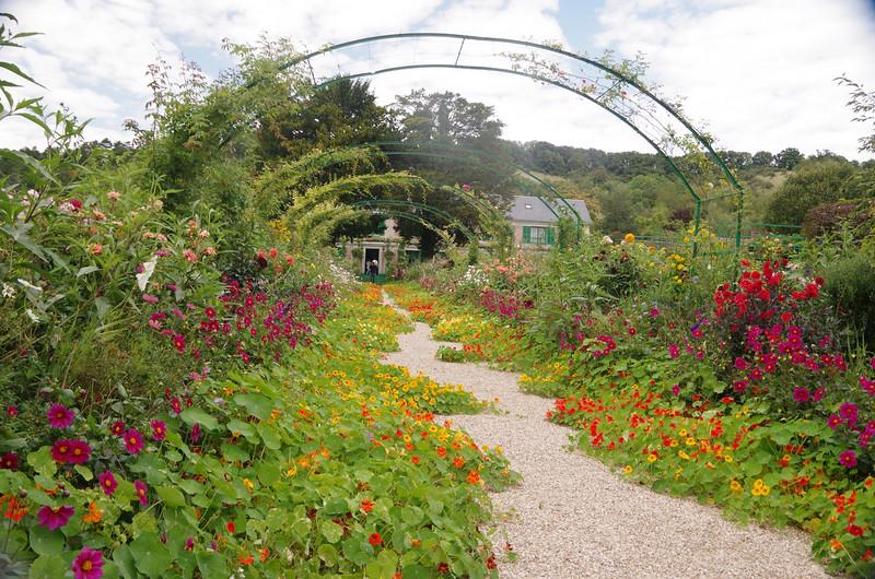 Monet's garden.