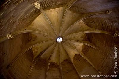 Languedoc-Roussillon. Petit Camargue. Aigues-Mortes. Tour de Constance