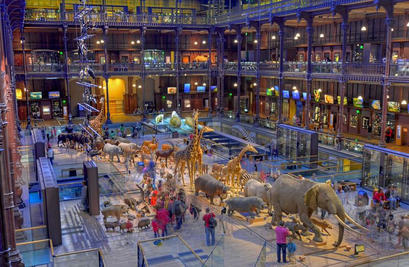 Muséum National d'Histoire Naturelle de Paris