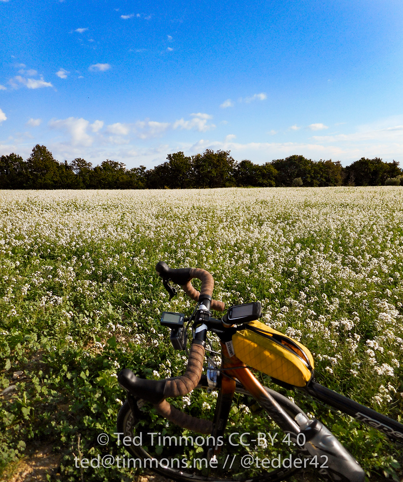 Stop during bicycle ride to appreciate the flowers.