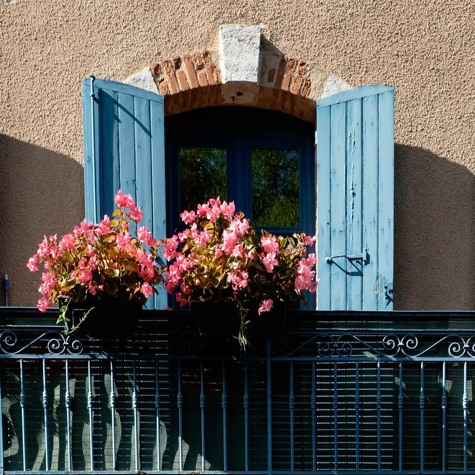 flowers+shutters-2080