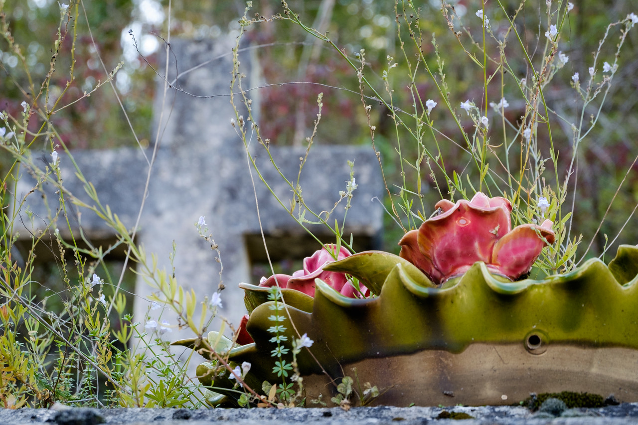 cemetery+le_bugue-1257