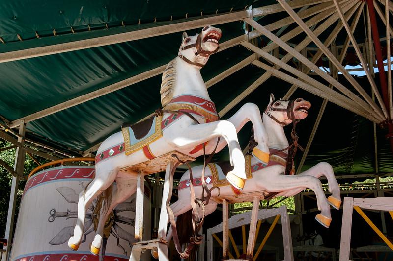 carousel_horses-1339
