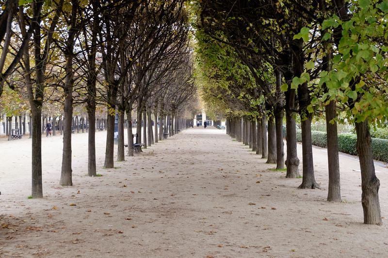 jardin_du_palais_royal-2413