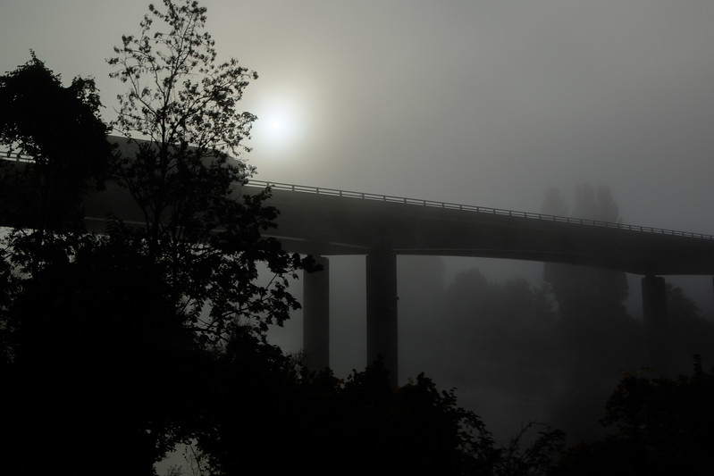 foggy_view-2262