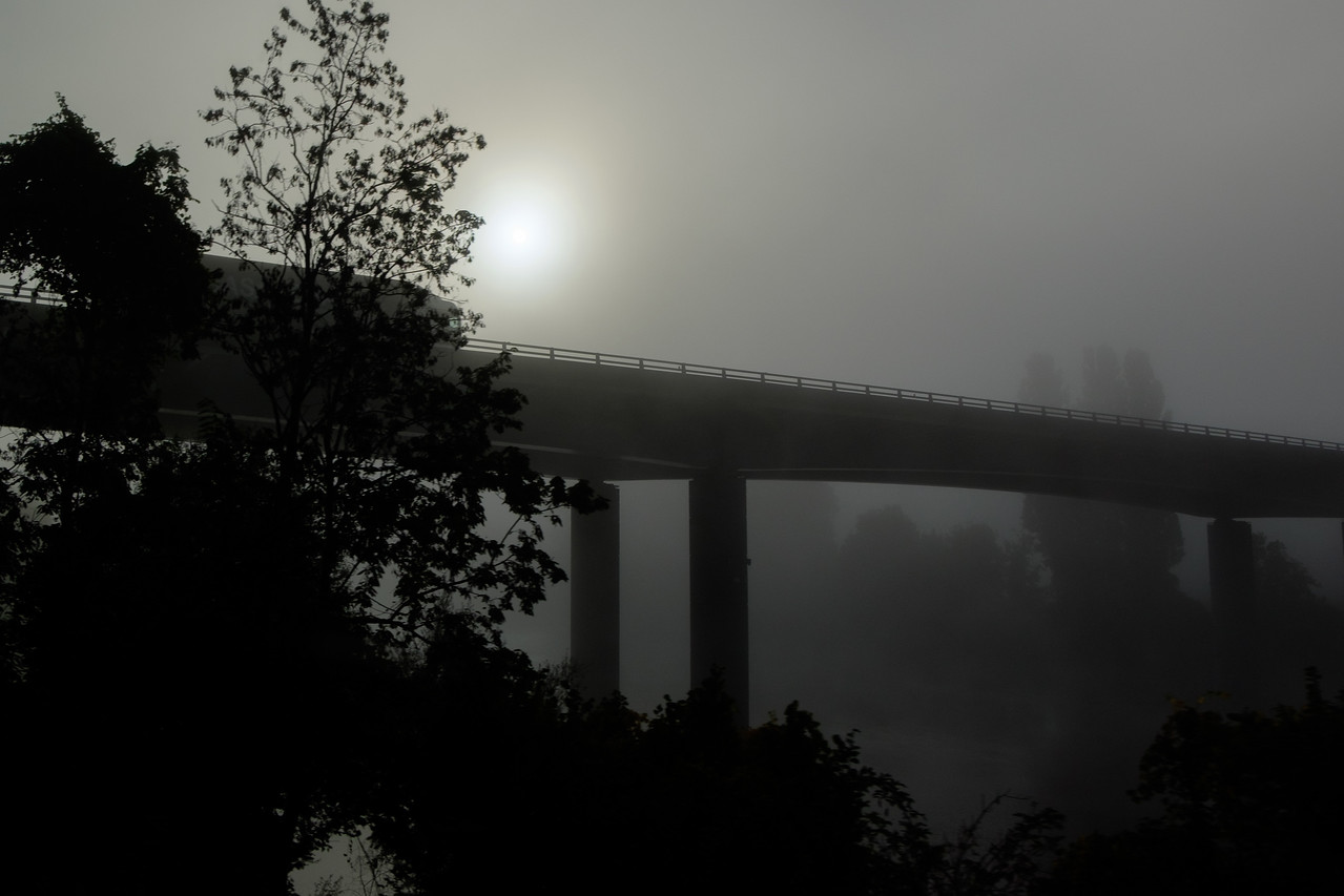 foggy_view-2262