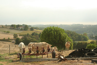 countryside round V&B gite