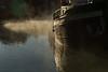 Morning mist, Canal de Bourgogne, France